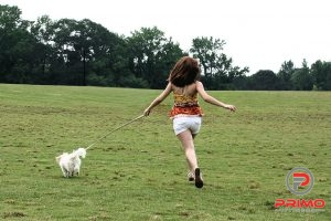 14665-a-cute-young-girl-running-with-her-dog-pv