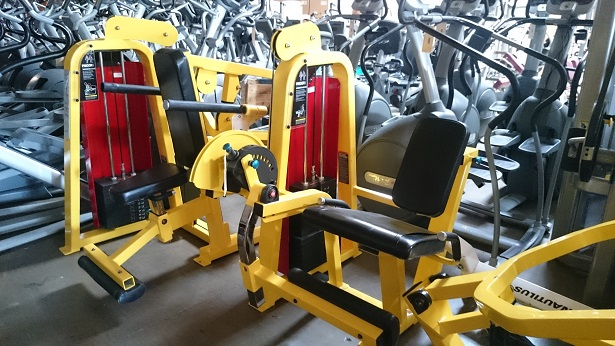 Precor Icarian Strength Line (Yellow) 2