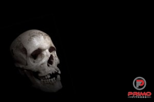 9367-a-human-skull-on-a-black-background-pv