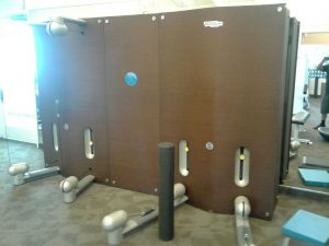 Technogym Kinesis Wall (2 station)