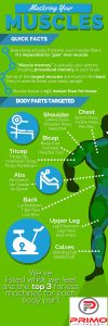 Dynamic Fitness Solutions Fitness Equipment Infographic