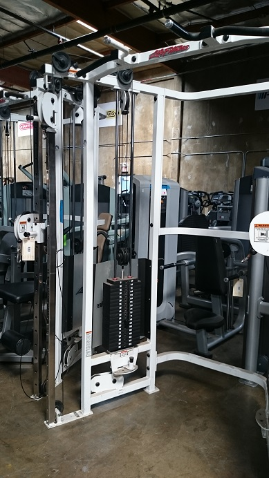 Life Fitness Dual Adjustable Pulley 2