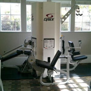 Cybex 3-Stack Multi-Gym