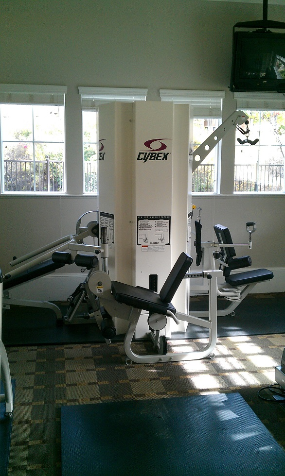 Cybex 3-Stack Multi-Gym