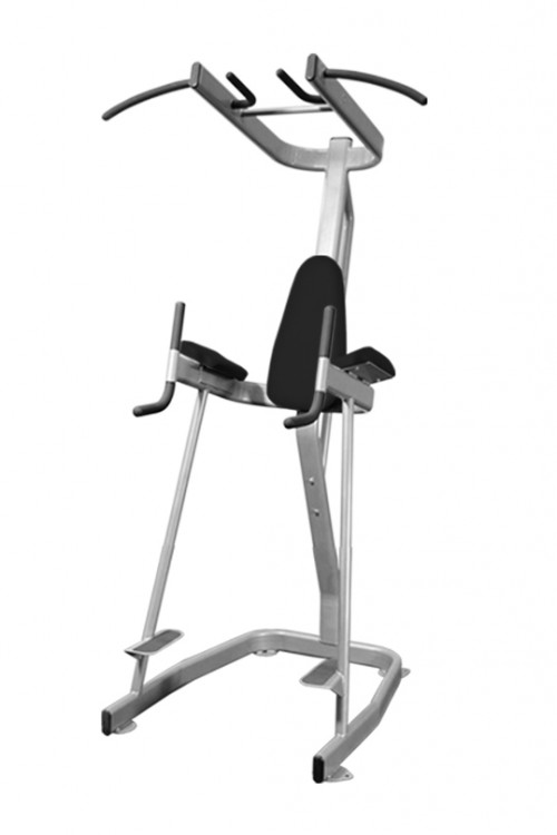 Vertical Knee Raise w/Pull Up Station