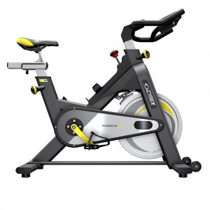 Cybex IC 2 Indoor Cycle